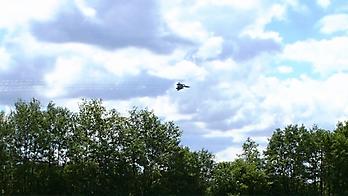 MACROSS VF-4 Lightning III for Phoenix RC