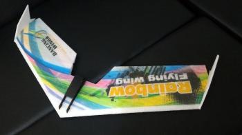 DW HOBBY - Rainbow flying wing V2 kit (800mm)